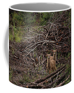 Muledeerfawns2 Coffee Mug