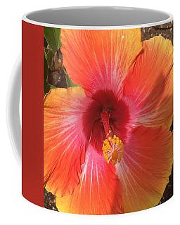 Multi-colored Beauty Coffee Mug