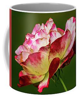 Multi-colored Rose Coffee Mug