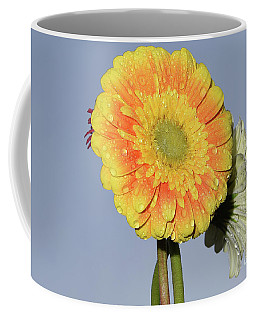 Coffee Mug featuring the photograph Multicolored Gerbers by Elvira Ladocki