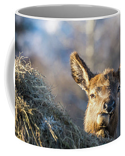 Munching Coffee Mug