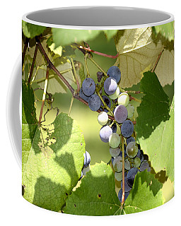 Muscadine Grapes Coffee Mug