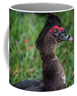 Muscovy Duck-0318 Coffee Mug