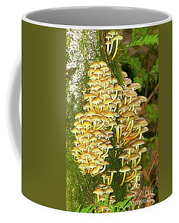 Coffee Mug featuring the photograph Mushroom Colony Photo Art by Sharon Talson
