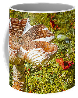 Mushroom Upclose Coffee Mug by Judi Saunders