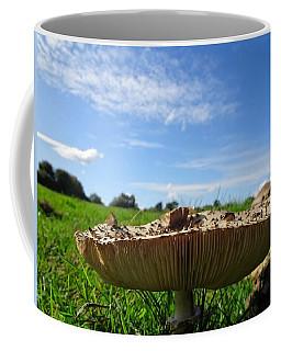 Mushroom, Worms Eye View Coffee Mug