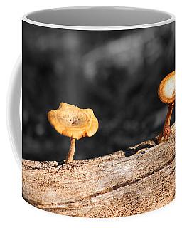 Mushrooms On A Branch Coffee Mug