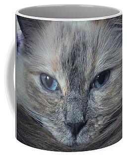 Mustachioed Cat Coffee Mug by Karen Stahlros