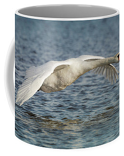 Coffee Mug featuring the photograph Mute Swan by Roy McPeak