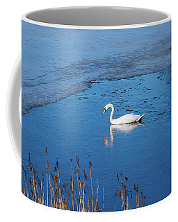 Mute Swan Swimming Coffee Mug