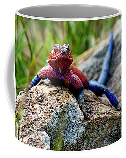 Mwanza Flat-headed Rock Agama Coffee Mug
