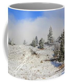 My Backyard Coffee Mug