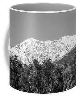 My Baldy 2016 Coffee Mug
