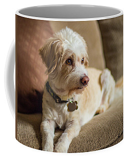 My Best Friend Coffee Mug