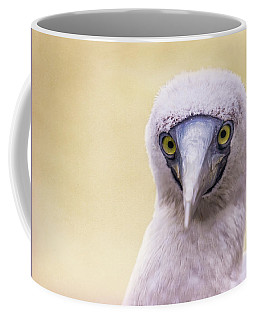 My Booby Buddy Coffee Mug