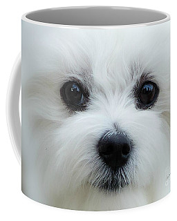 My Boy Coffee Mug