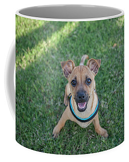 My Dog  Coffee Mug