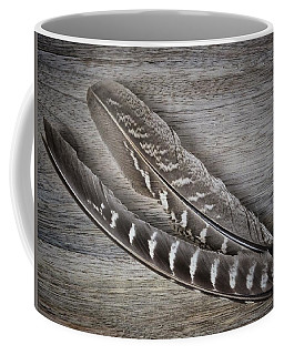 My Fabulous Feathery Find. Coffee Mug by Karen Stahlros