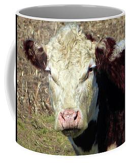 My Favorite Cow Coffee Mug by Tina M Wenger