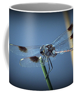 My Favorite Dragonfly Coffee Mug