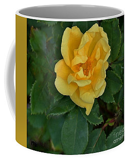 My First Yellow Rose Coffee Mug