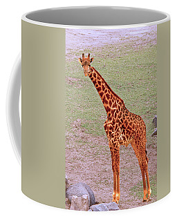 Coffee Mug featuring the photograph My Giraffe by Howard Bagley