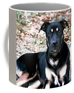 Coffee Mug featuring the photograph My Handsome Bulldog Brutus by Belinda Lee