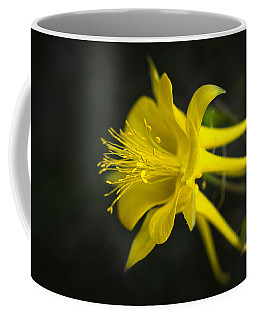 My Love For You Will Last Coffee Mug