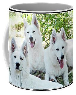 My Three Amigos Coffee Mug