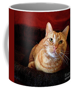 Coffee Mug featuring the photograph My True Love by Luther Fine Art