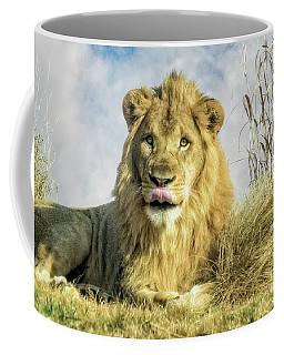 My You Look Tasty Coffee Mug