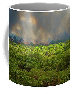 Myakka River Burn Coffee Mug