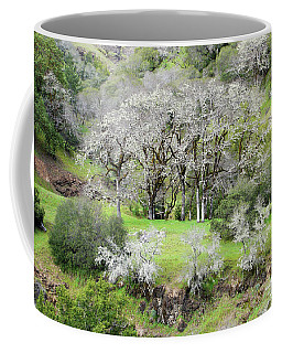 Mysterious Landscape In Sonoma County Coffee Mug