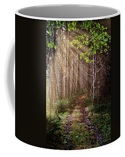 Coffee Mug featuring the photograph Mystery At Dawn by Debra and Dave Vanderlaan