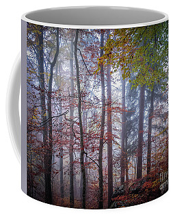 Coffee Mug featuring the photograph Mystery In Fog by Elena Elisseeva