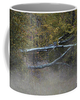 Coffee Mug featuring the photograph Mystery In The Fall by Skip Willits
