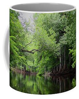 Mystical Withlacoochee River Coffee Mug