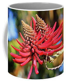 Naked Coral Tree Flower Coffee Mug by Mariola Bitner