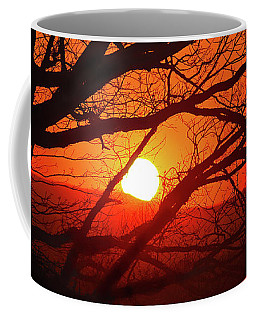Naked Tree At Sunset, Smith Mountain Lake, Va. Coffee Mug