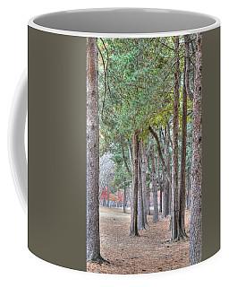Nami Island Korea Coffee Mug