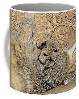 Nap Time Again Coffee Mug