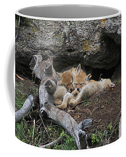 Coffee Mug featuring the photograph Nap Time by Steve Stuller