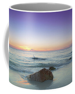 Naples Florida Sunset Coffee Mug