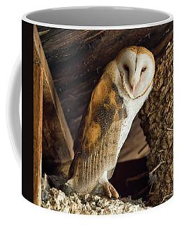 Napster Coffee Mug