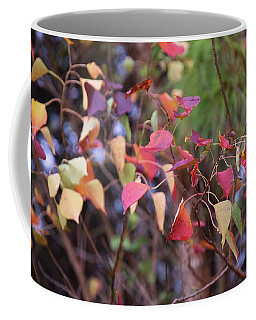 Natchez Trace Fall Coffee Mug
