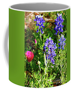 National Colors Coffee Mug