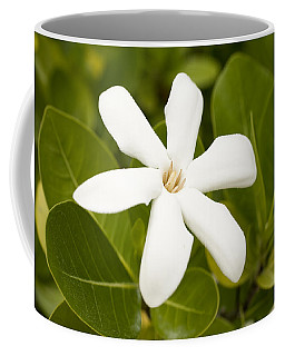 National Flower, The Tahitian Gardenia Coffee Mug