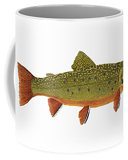 Native Brook Trout Coffee Mug