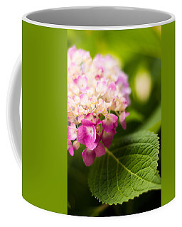 Natural Beauty Coffee Mug by Parker Cunningham