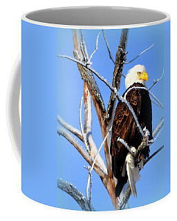Natural Freedom Coffee Mug